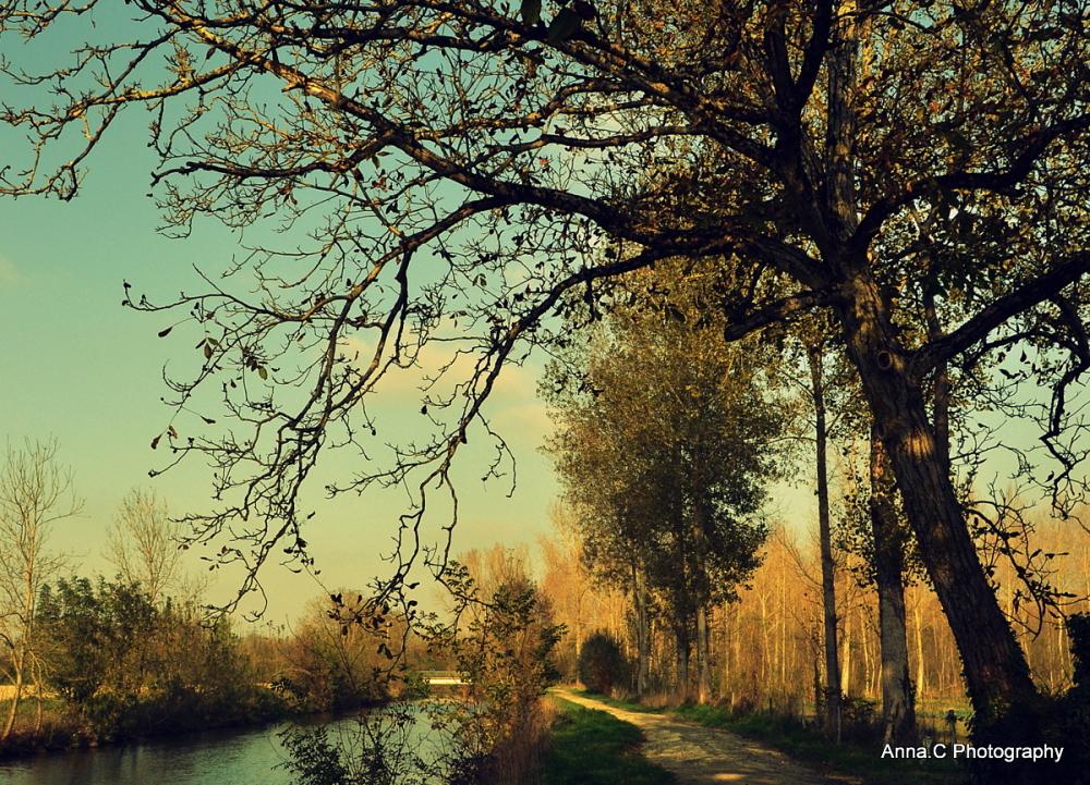 le long de la rivière # 2