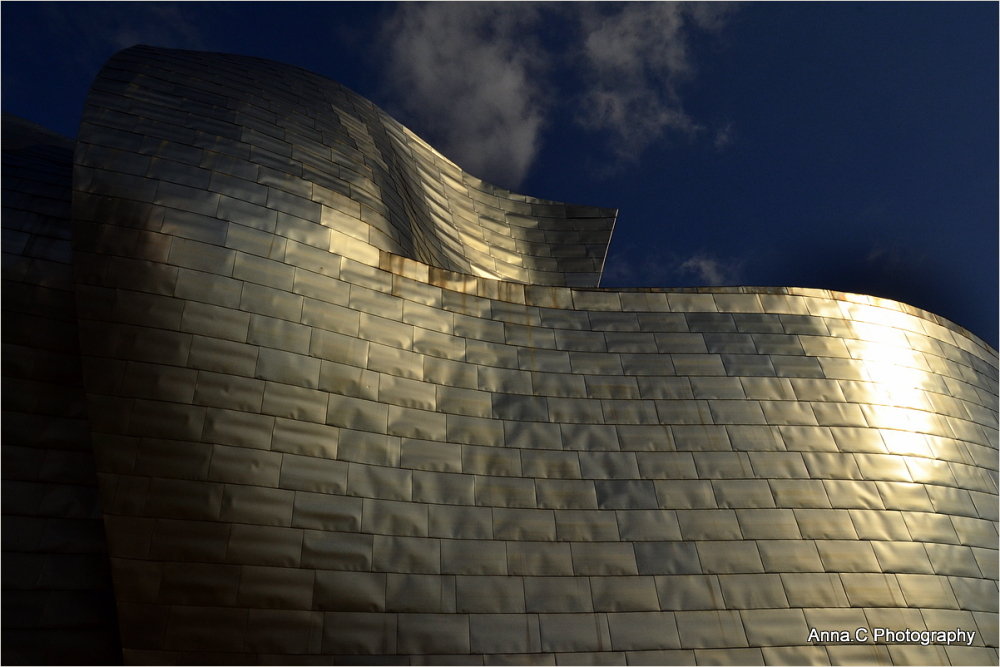 Guggenheim Bilbao # 1 Le Nautilus