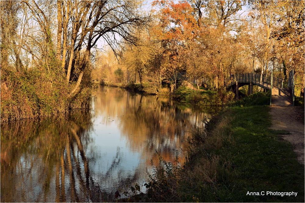 Le marais en automne