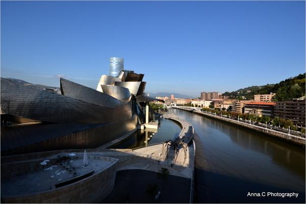 Vue plongeante sur Guggenheim