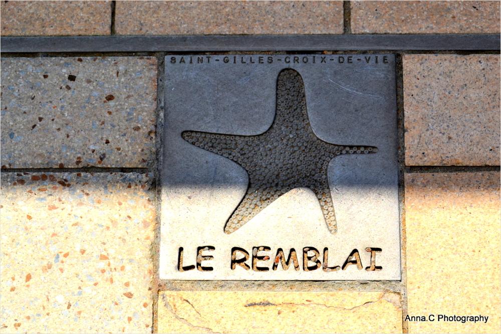 L'étoile de mer du remblai
