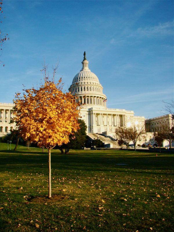 Washington DC, Obama, US, Travel Capitol Hill