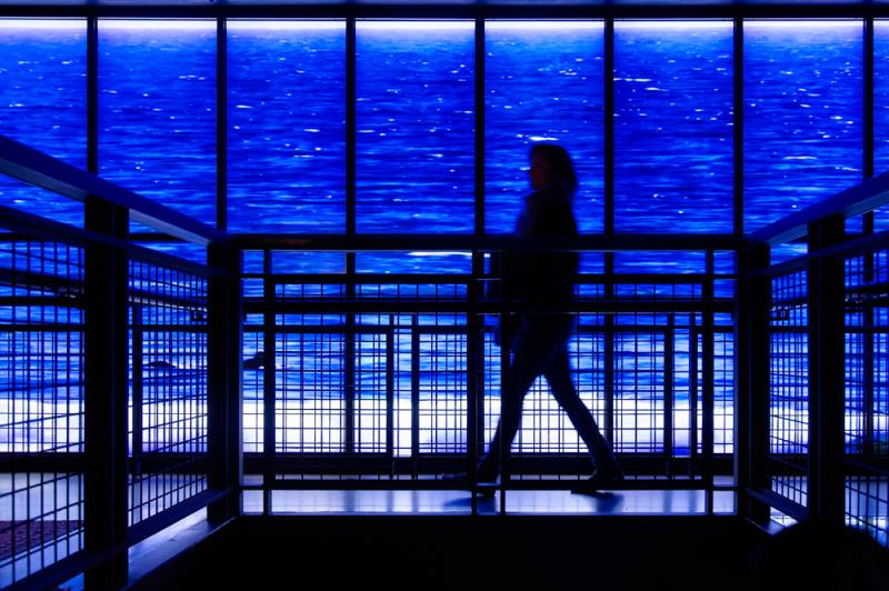 NYC - le rêve bleu des commerçants