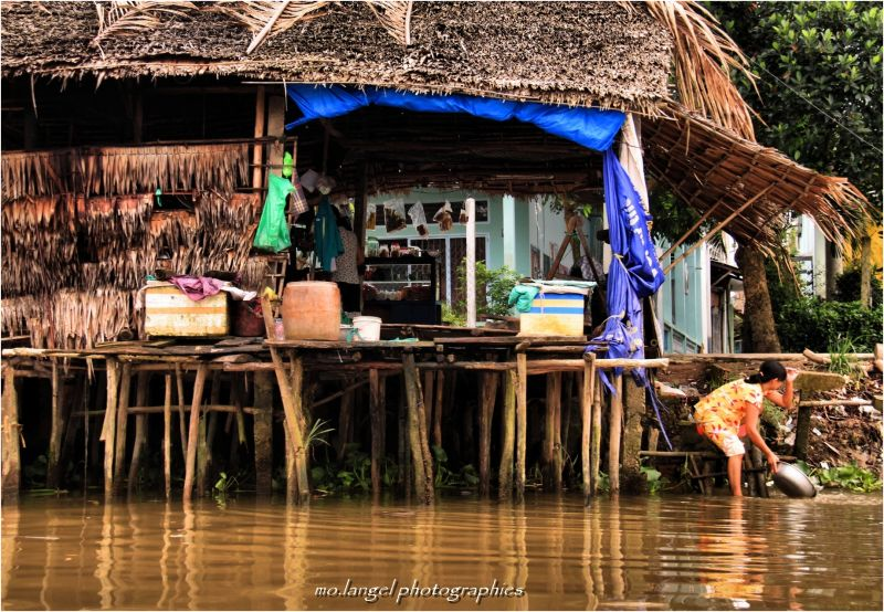 La vie sur les rives du Mékong II