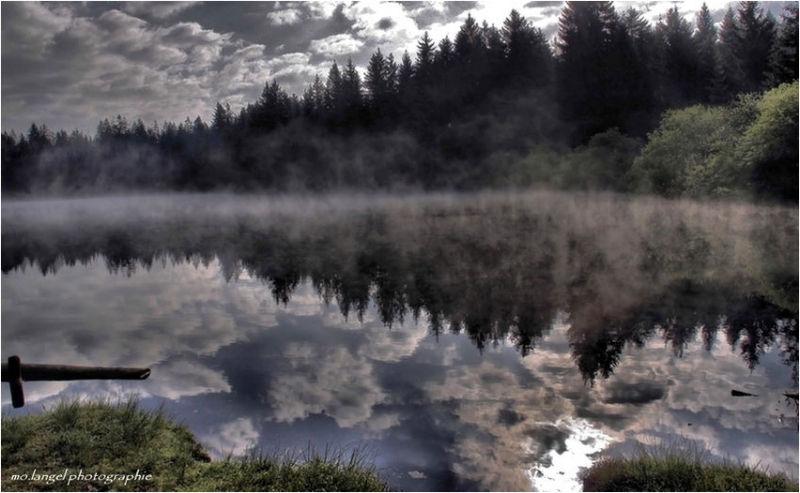 Brume sur l'étang
