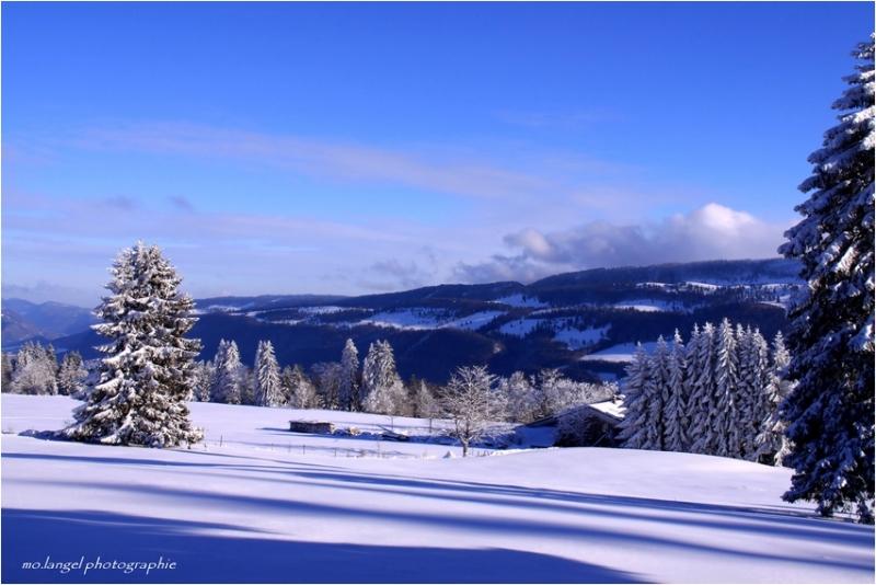 Snow ou ... Mon pays c'est l'Hiver ...!:)