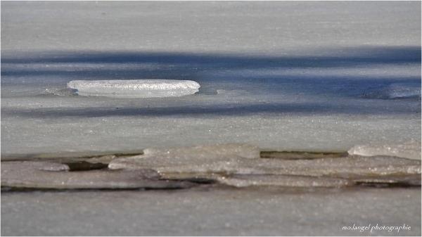 Le disque de glace