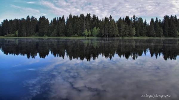 Le ciel se baigne dans l'étang