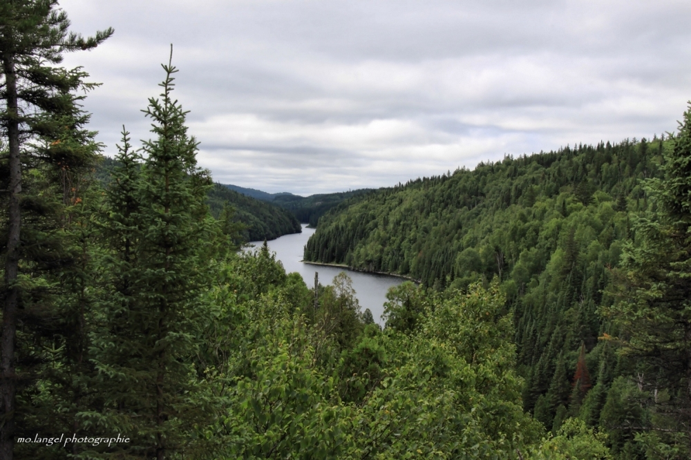 Les méandres de la rivière