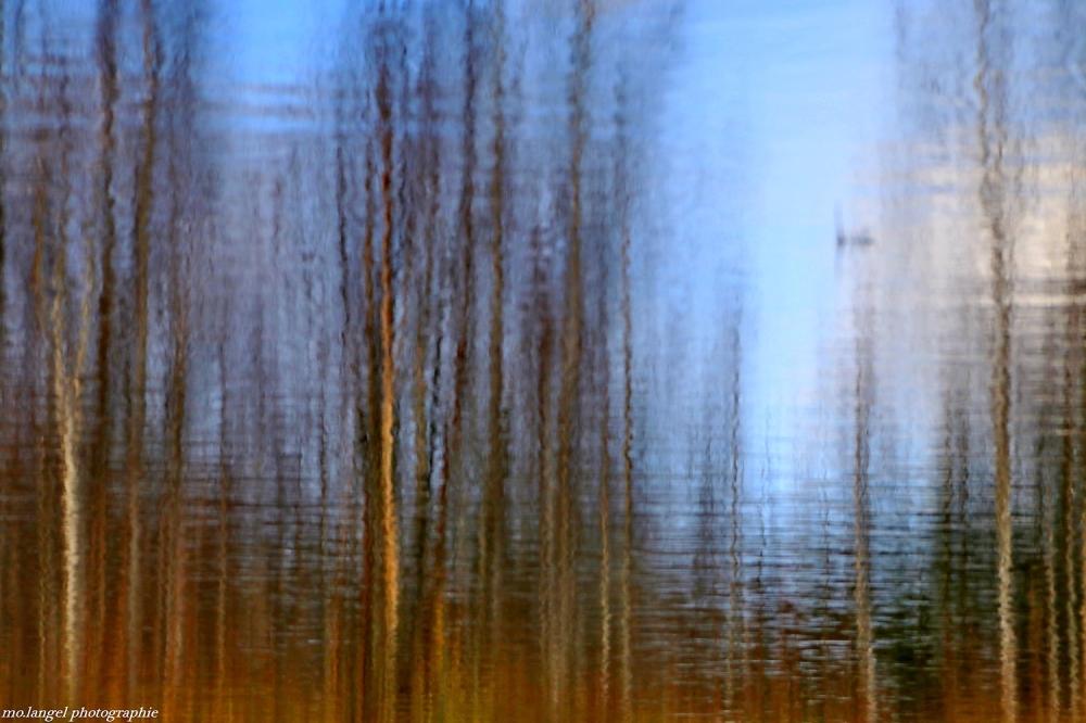 Miroir d'un automne sur le déclin