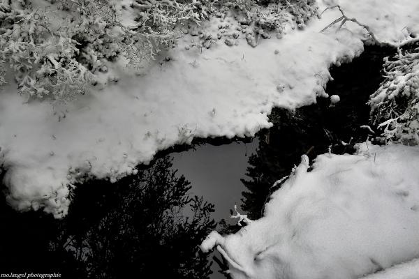 Couleurs de l'hiver