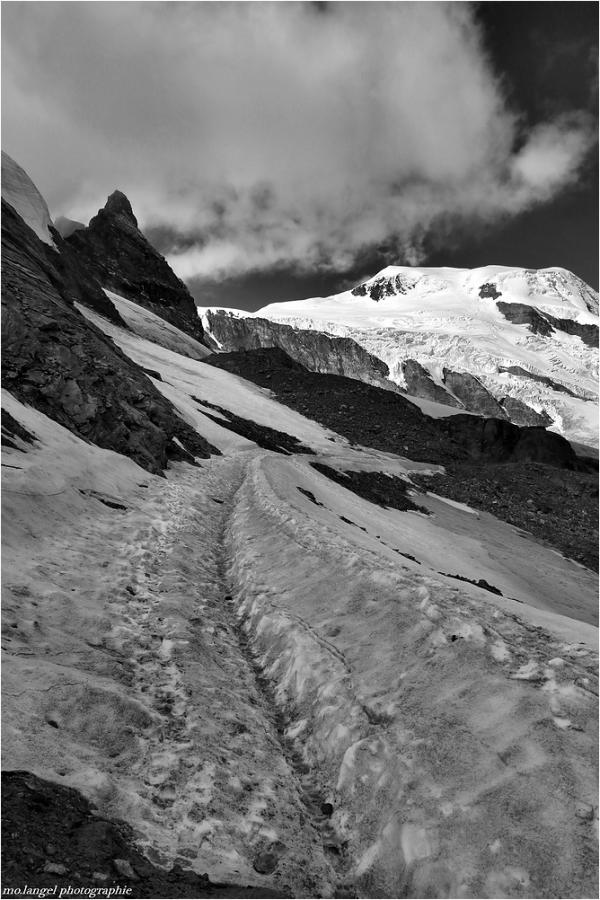 Le chemin dans la neige