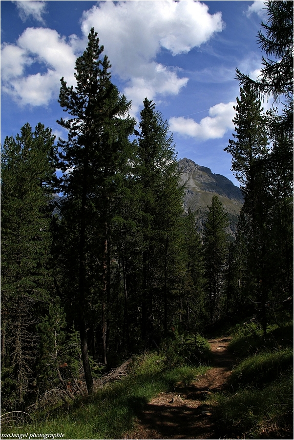 Randonnée dans le parc national