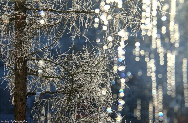 Perles de lumière