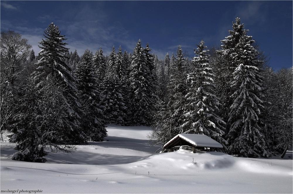 Nappé de neige
