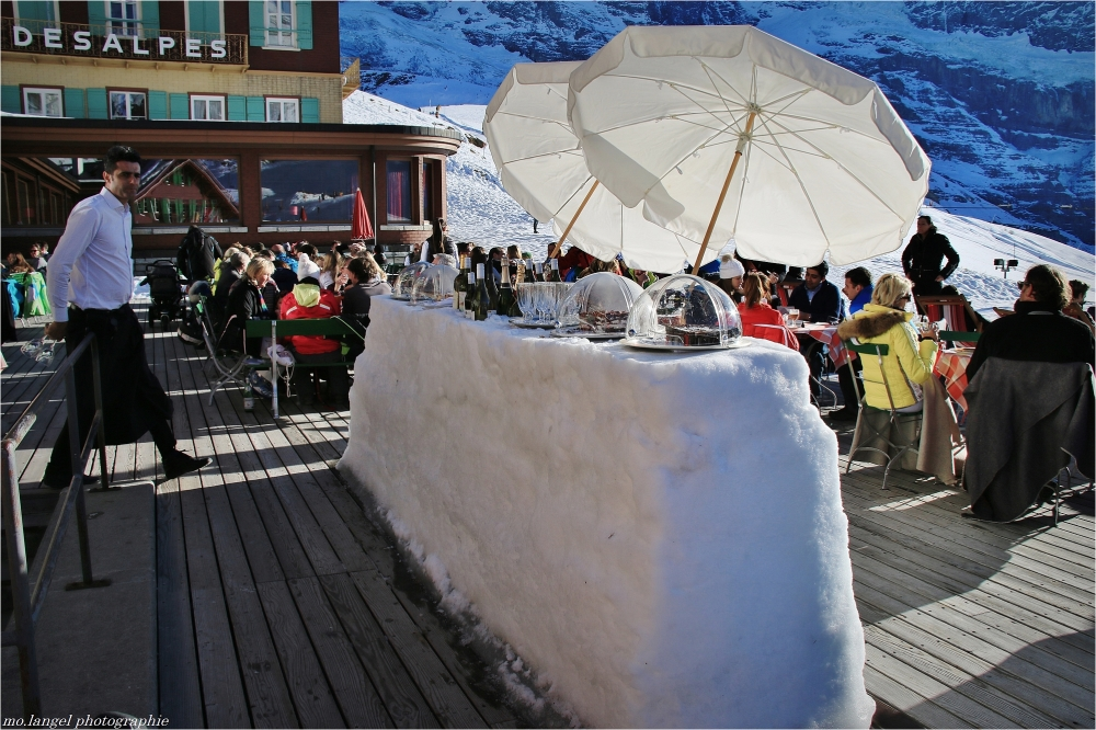 Le bar des neiges