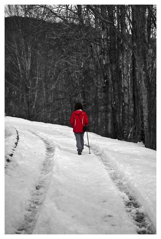 Sobre el camino