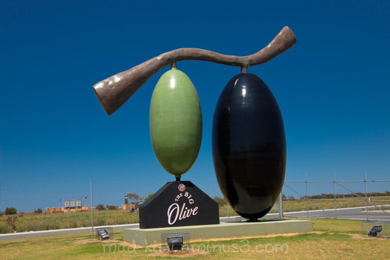 The Big Olive