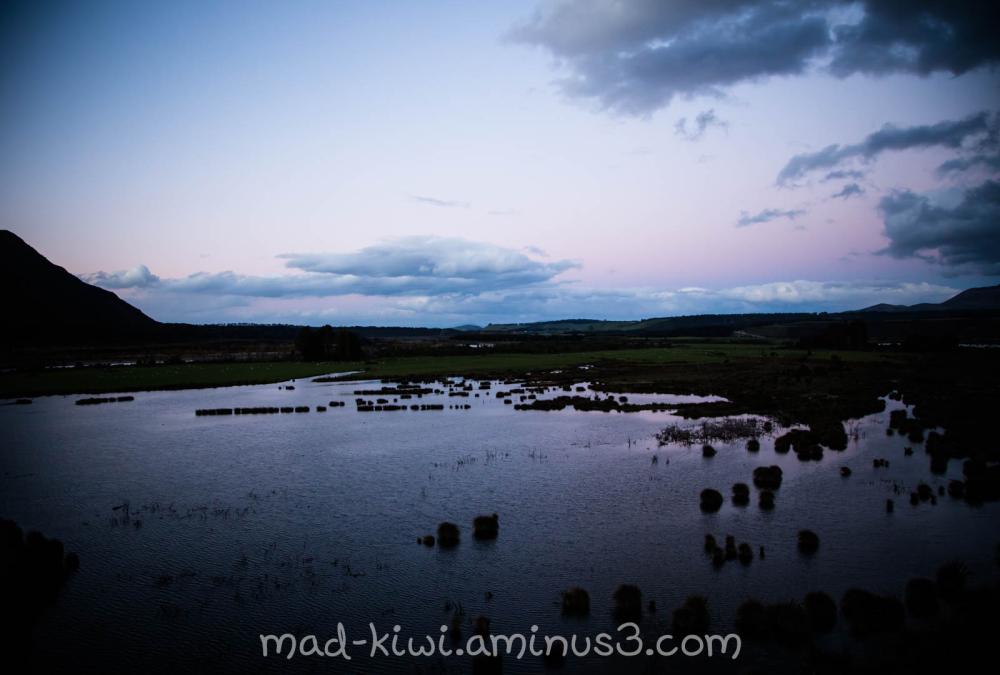 Rakatu wetlands II