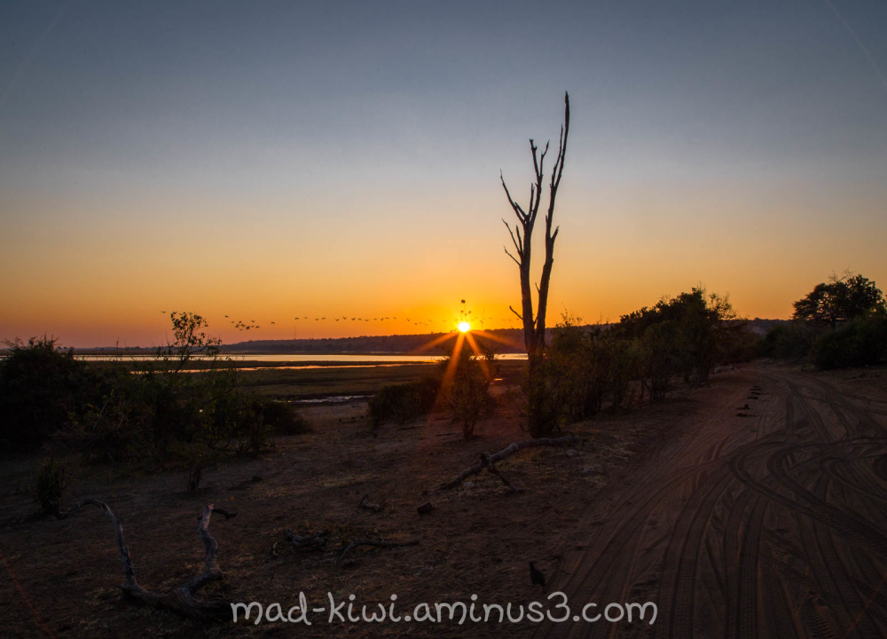 Botswana Sunset VIII