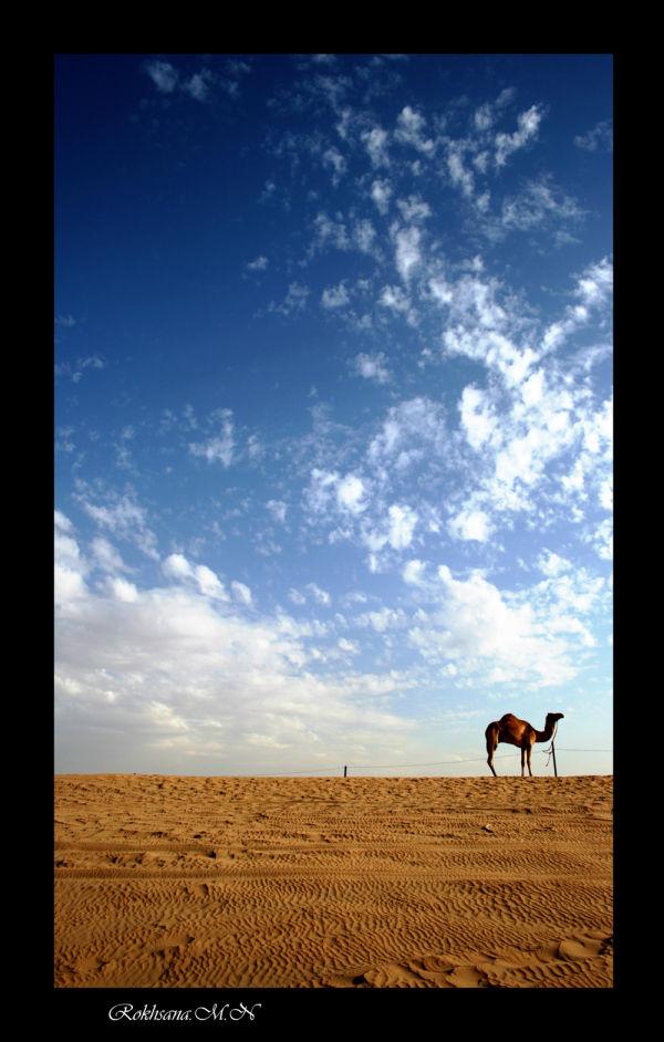 The sand, The sky, The SILENCE...