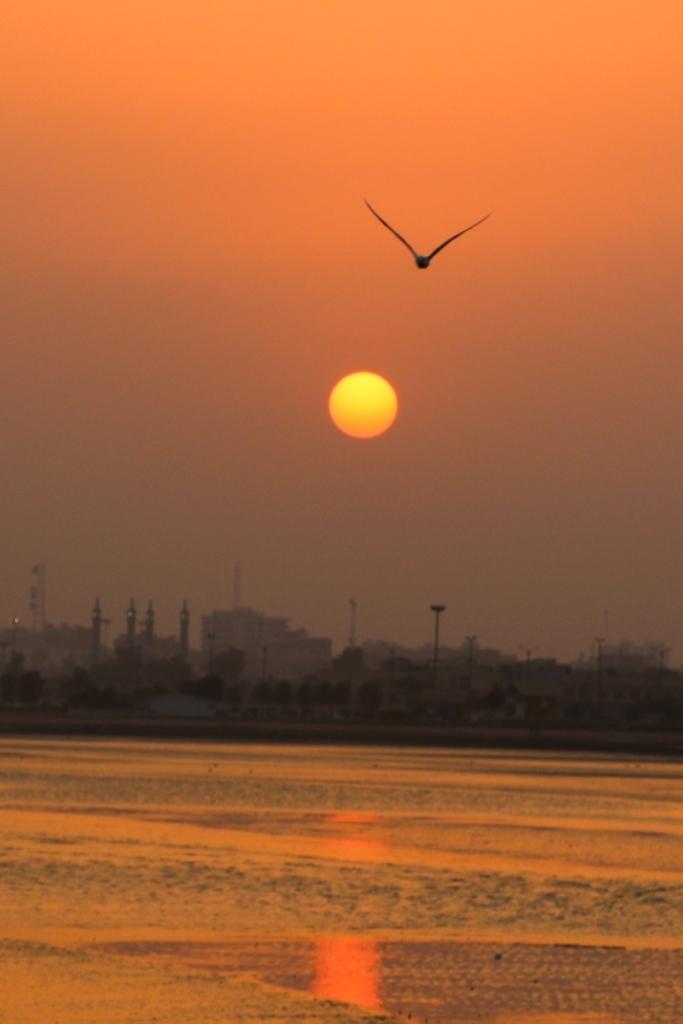 Sun Set of Persian Gulf