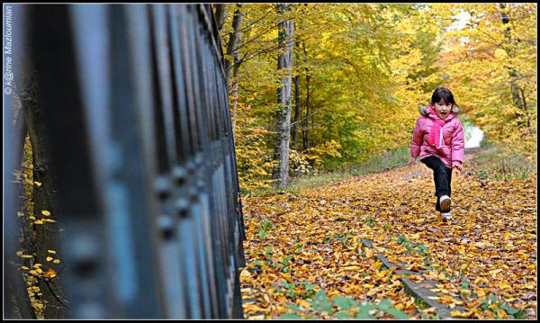 Croustillant d'automne