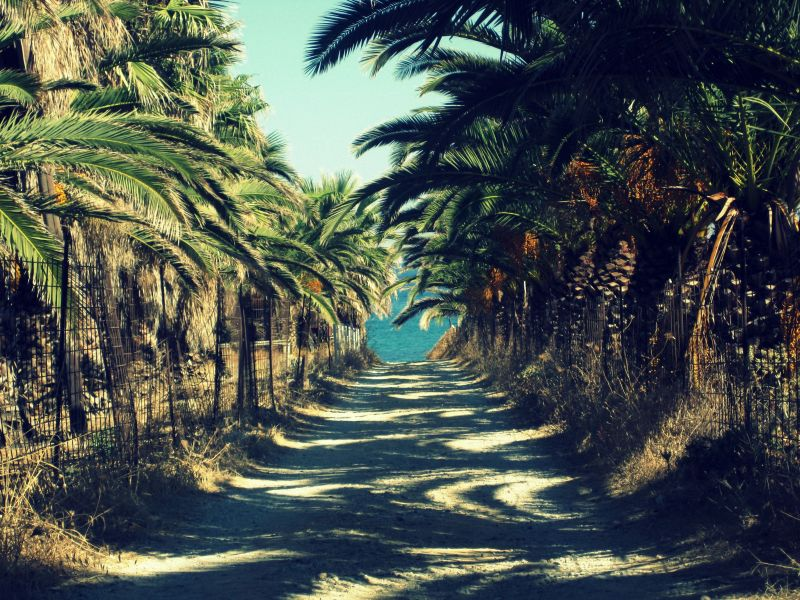 Tristes tropiques....    (2)