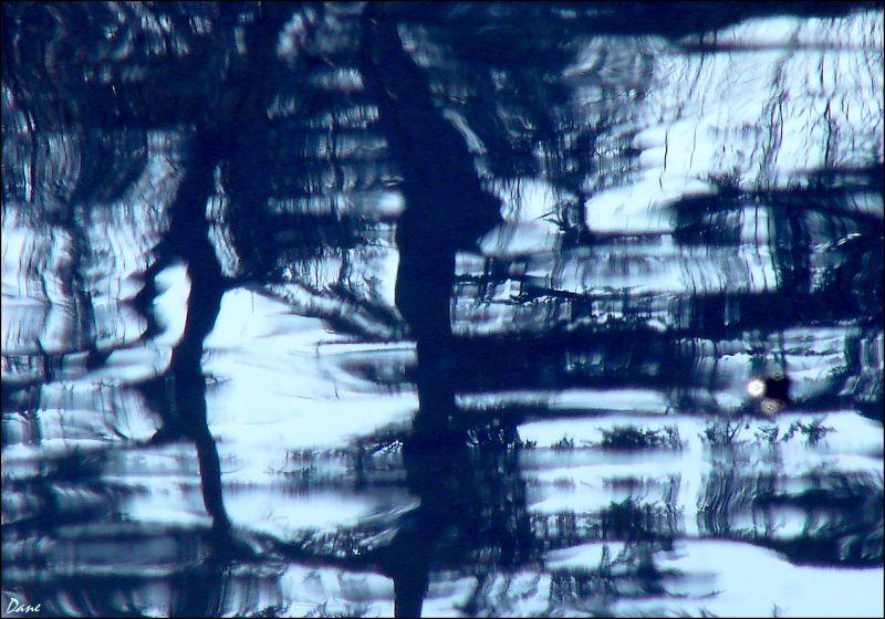 Des reflets sur l'eau