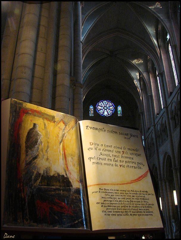 Sous les voutes de la cathédrale.