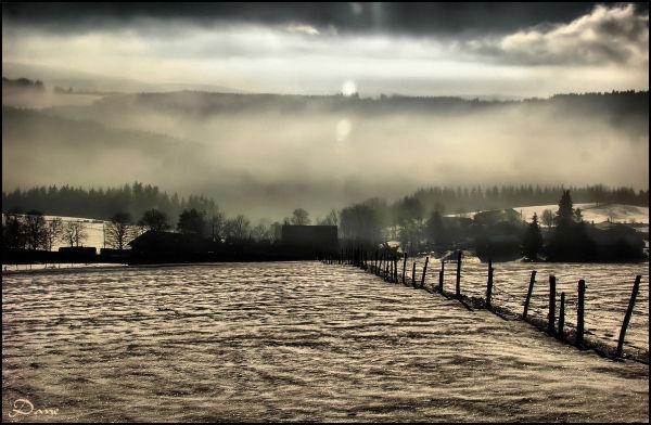 Soleil et brume sur la campagne enneigée