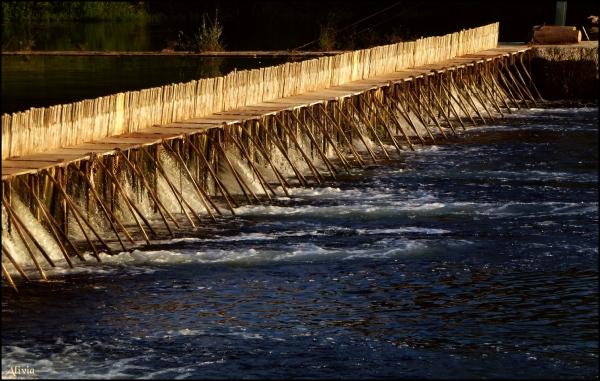 Barrage à aiguilles à Chisseau