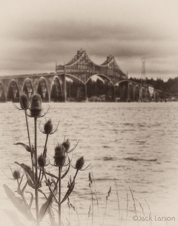 Teasel&Bridge