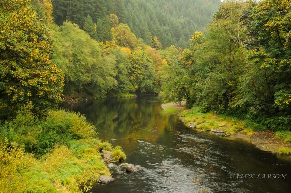 Alsea River #3