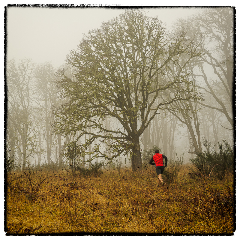 Fog&ColdDoesn'tStopPacNW