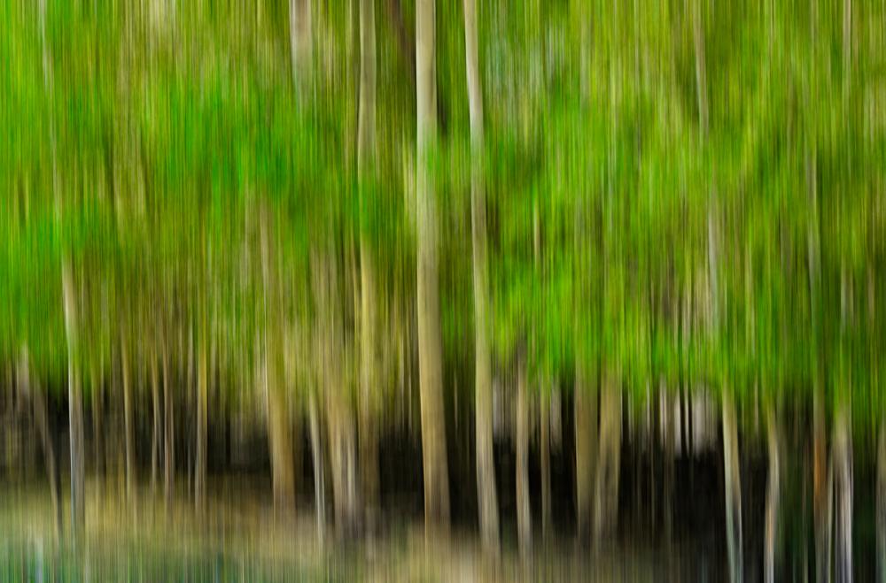 Path Blur