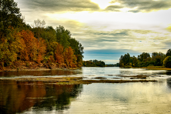Autumn on the Willamette