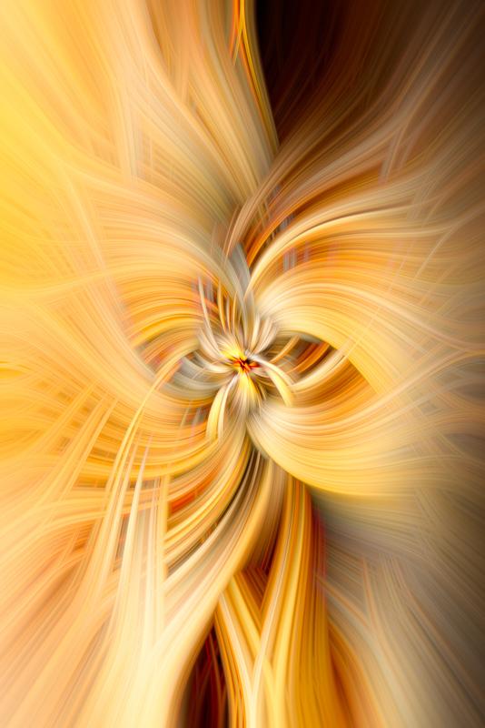 Natural Textures Original Spiral