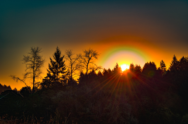 """Timberhill Natural Area Sunrise (Aurora)"""