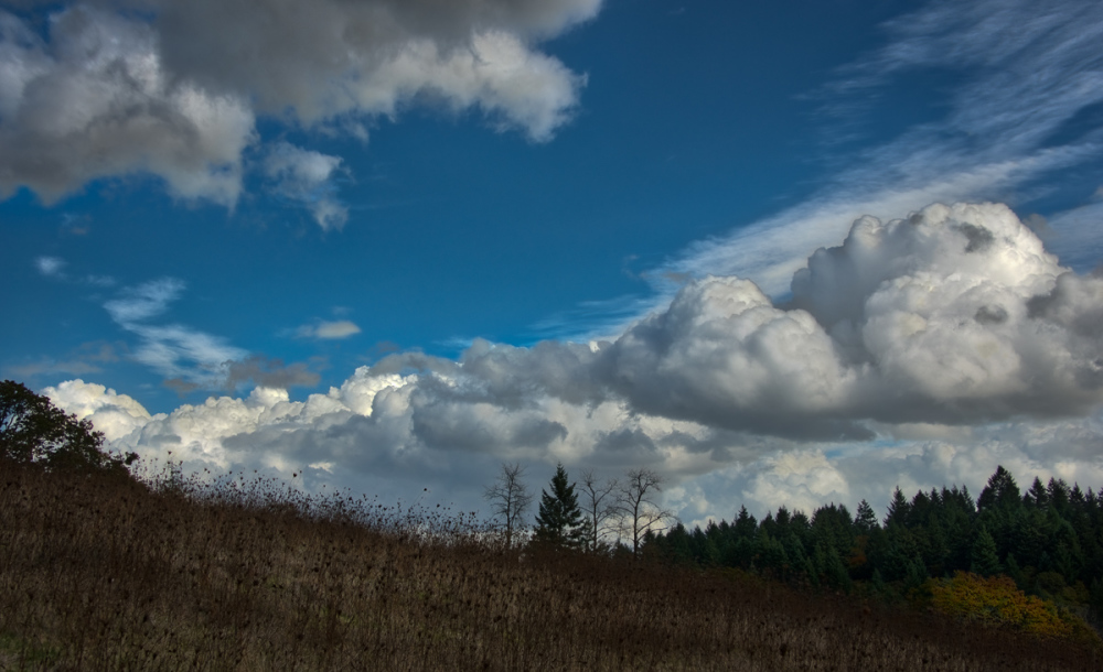 """""""Clouds Before the Storm"""""""