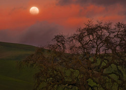 Moonrise along the Diablo Range