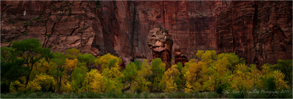 Temple of Sinawava - Zion Canyon