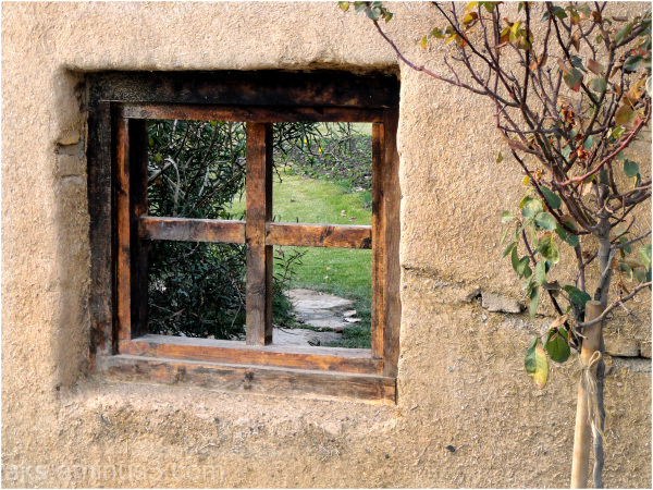 A window in the middle of a garden.