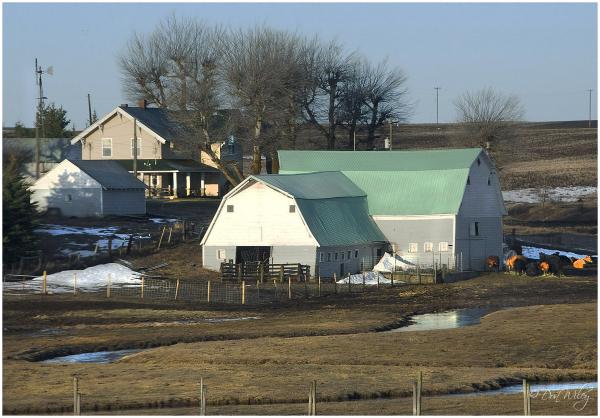 barnyard eastern washington
