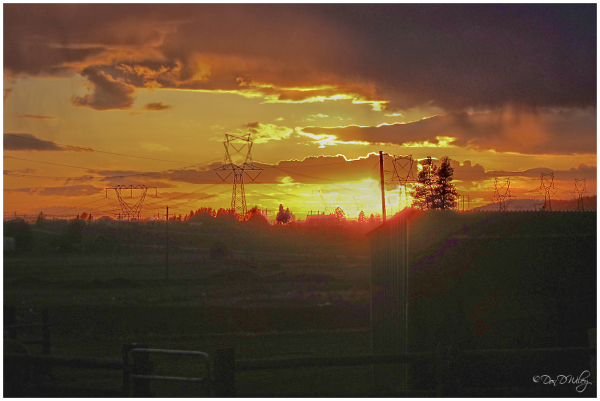 Powerline Sunset
