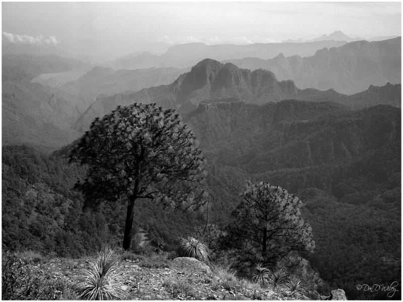 Mazatlan Mountains