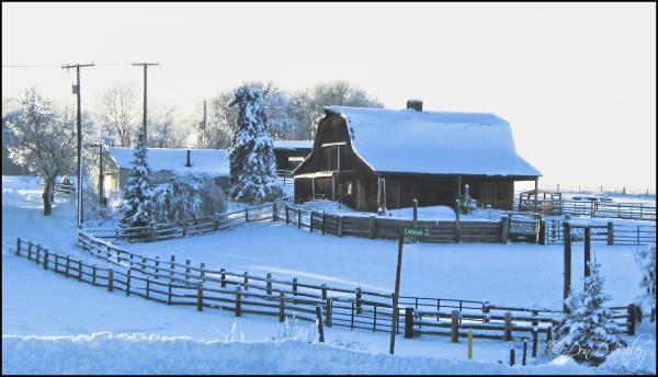 Pleasant Prairie Barn