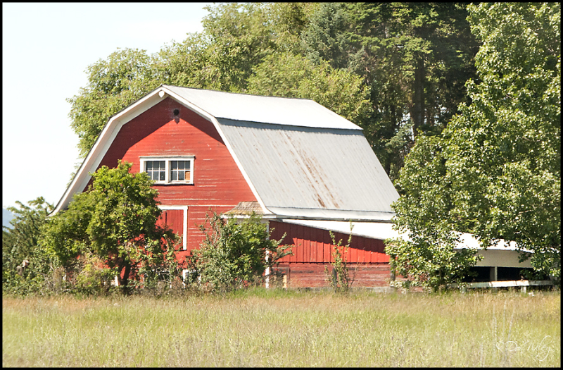 Secluded Barn