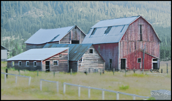 Cluster Barns