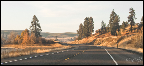Entering the Palouse Country